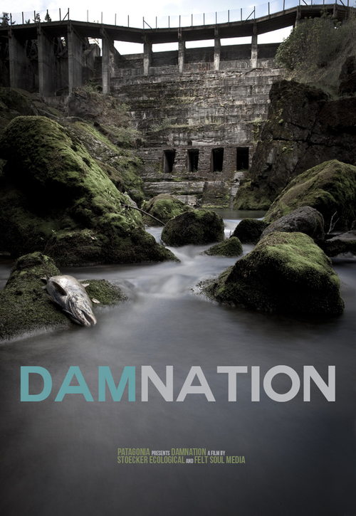 """Poster for the movie """"DamNation"""""""